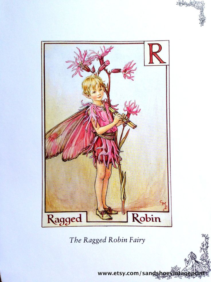 1930s The RAGGED ROBIN Fairy and The by sandshoevintageprint
