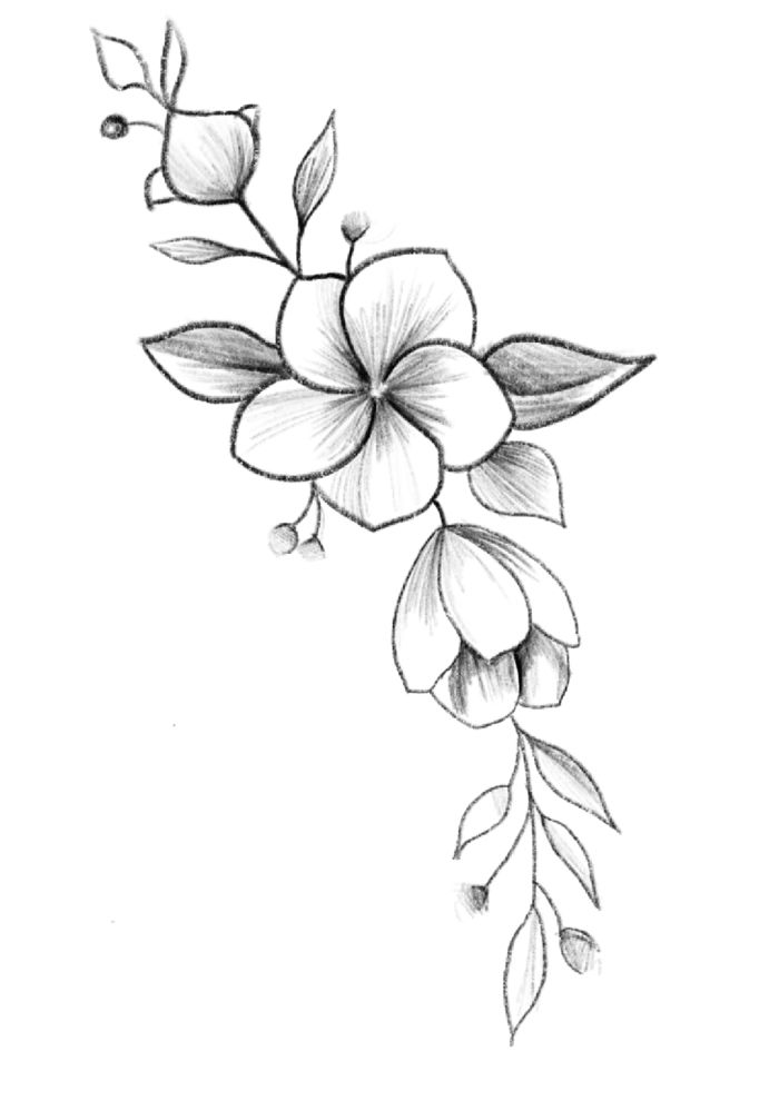 1001 Ideas De Dibujos De Flores Faciles Y Bonitos Dibujos De Flores Flores Faciles De Dibujar Dibujos