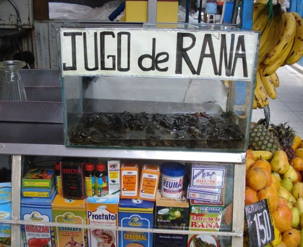 Travel Sights: Frog Juice in Peru, Jugo de Rana. Natural Viagra!