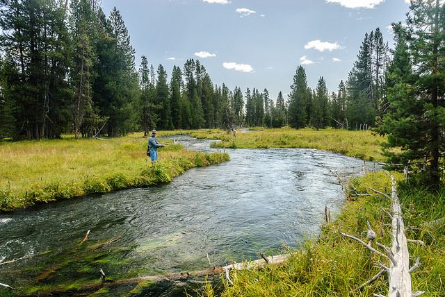 Central Oregon Fly Fishing