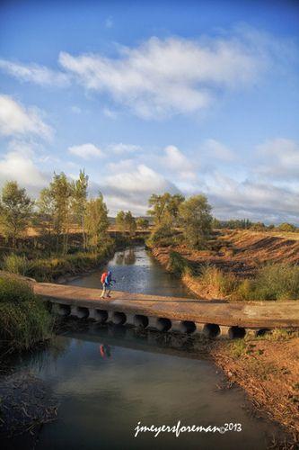 Walking the Meseta, Camino to Santiago de Compostela