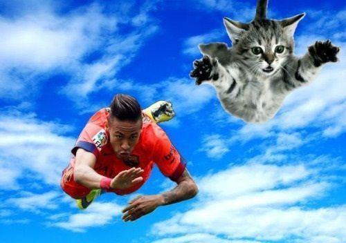 Brazylijczyk lata pośród chmur w towarzystwie kota • Neymar jak samolot pokonuje powietrzne kilometry • Wejdź i zobacz śmieszny mem >> #neymar #memes #football #soccer #sports #pilkanozna #funny