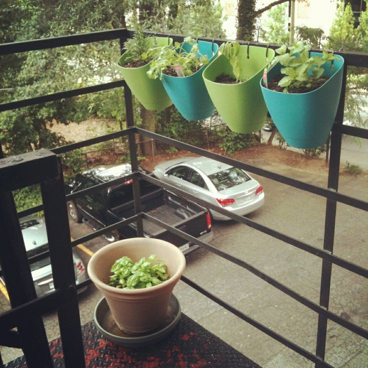 Start A Fire Escape Herb Garden. Love The Small Hanging Baskets, Great Idea.