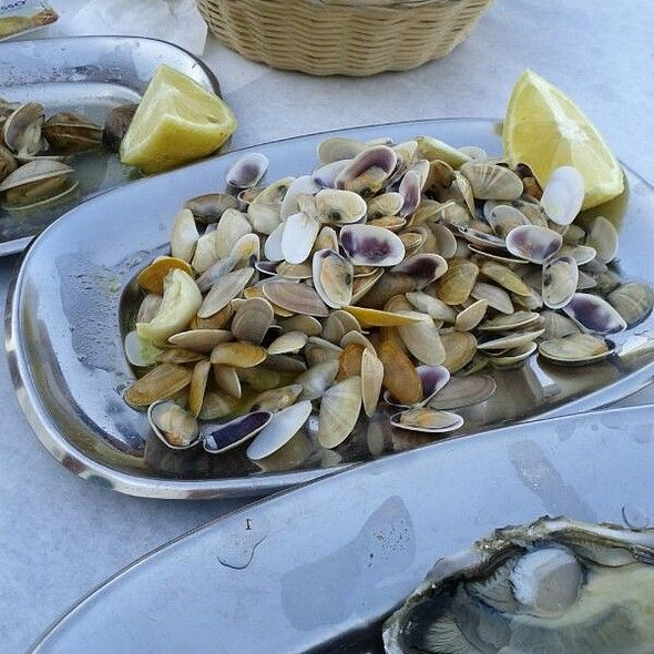 Conquilha clams, Bulhão Pato style  The recipe of 'Clams, Bulhão Pato style' was such a success that it is nowadays used to cook a great variety of bivalves, such as conquilha clams.