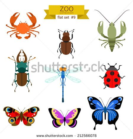 stock-vector-flat-design-vector-insects-icon-set-butterfly-crab-beetle-cancer-dragonfly-ladybug-flat-zoo-212566078.jpg (450×470)