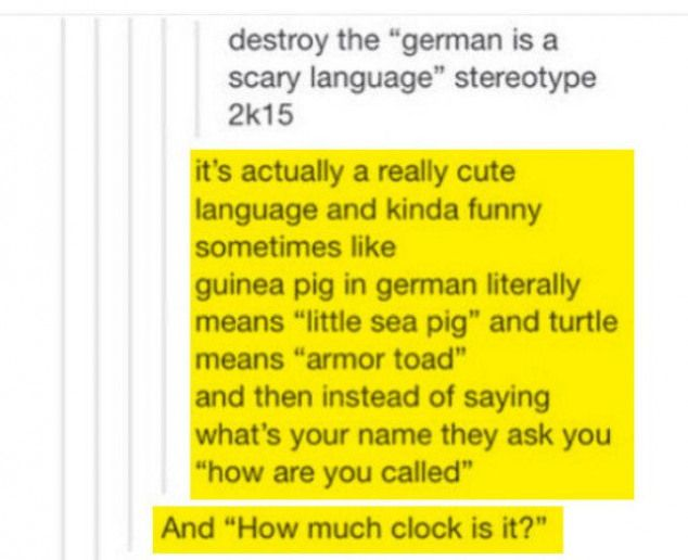 Aber Leute Die Englisch Als Muttersprache Haben Werden Das Nie Verstehen 19 Beweise Dass Du Die Deutsche Sprache Nich German Language German Humor German Words