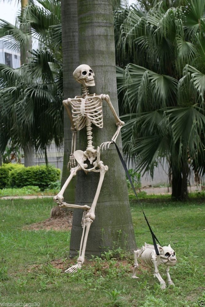 Halloween Skeleton POSE 'N STAY Awesome outdoor