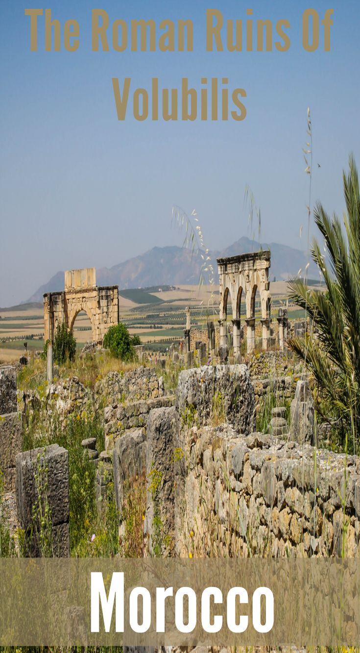 Divergent Travelers Photography Tour. Roman Ruins of Volubilis Morocco. The site is dominated by the remains of the grand public buildings around the forum, with the impressive arches of the Basilica courthouse arrayed in front of pillars of the temple to the god Jupiter Explore Volubilis Moroccoc. Ever wanted to visit Morocco? Click to read about the photo tour. http://www.divergenttravelers.com/travel-photography-tours/morocco-photo-tour/ Divergent Travelers Adventure Travel Blog