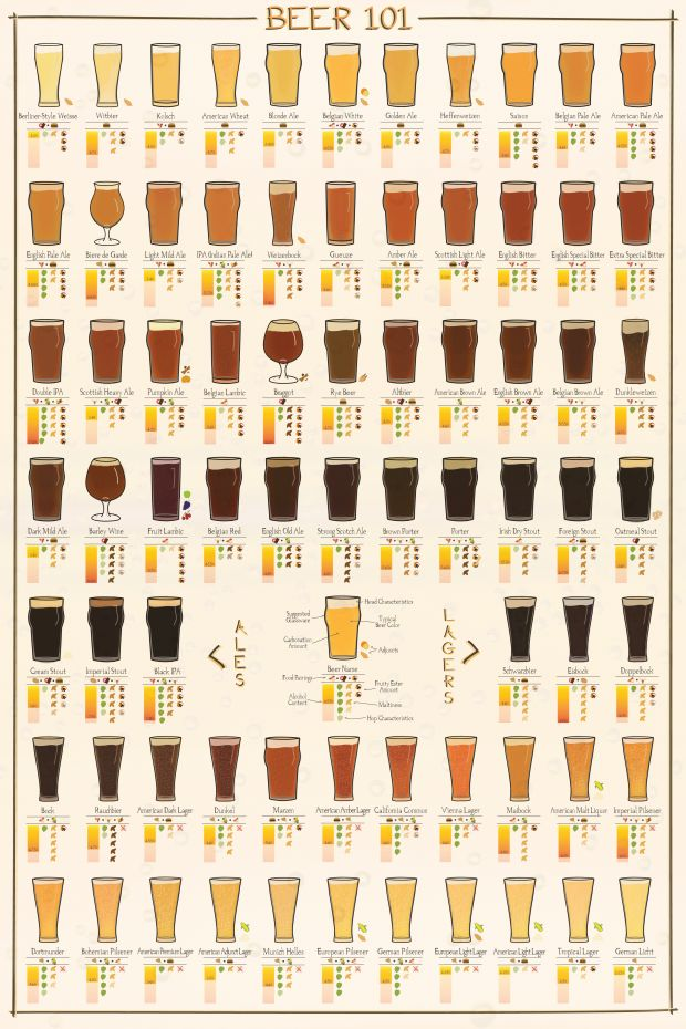 Beer 101 - Learn all about the different lagers and ales, delicious food pairings, and more at chasingdelicious.com. Infographic by @Russell Sese Sese Sese van Kraayenburg.