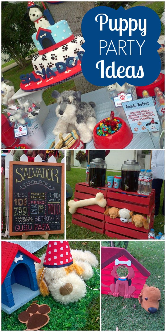 What a cute red and black puppy party for a boy birthday with pets galore! See more party ideas at CatchMyParty.com!