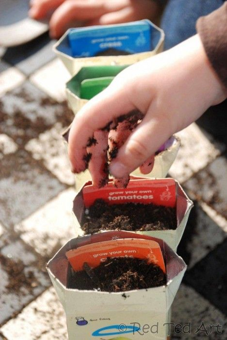 """Simple DIY Seedling pots to """"make"""" at home. Click through for more thrifty and upcycled garden craft ideas."""