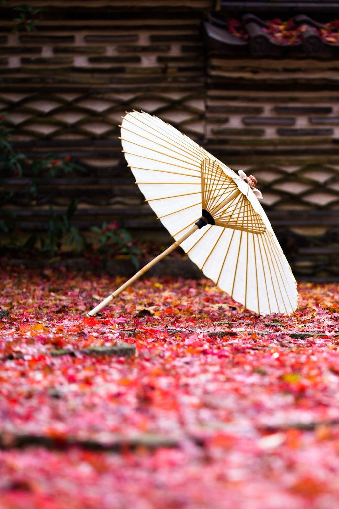 Con il termine estetica giapponese, tendiamo a significare non i presente studio moderno ma una serie di ideali antichi che includono il wabi (la bellezza passeggera e rigida), sabi (la bellezza della patina naturale e dell'invecchiamento), e yūgen (profonda grazia e sottigliezza). Questi ideali, e altri, sottendono molte delle norme culturali ed estetiche giapponesi su ciò che è considerato di gusto o bello.