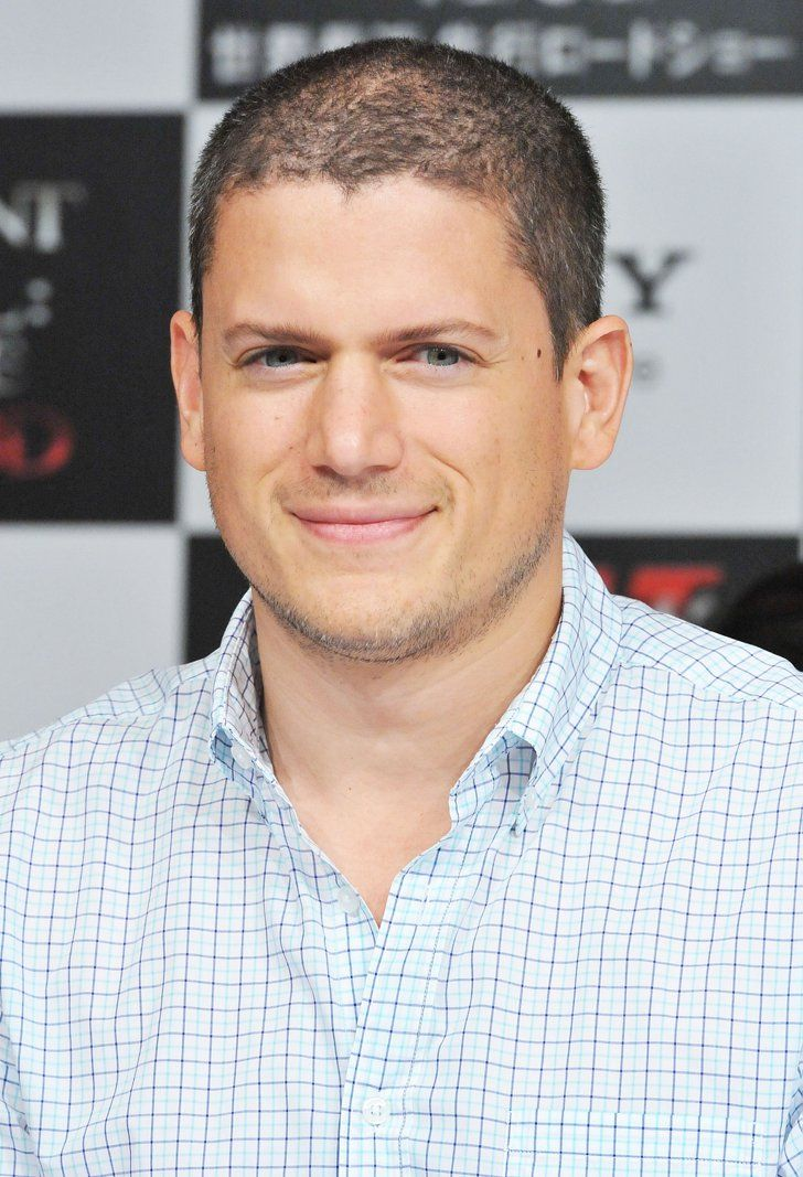 Pin for Later: How Gay Stars Have Come Out Wentworth Miller