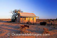 Australia - Miner's Cottage at Silverton