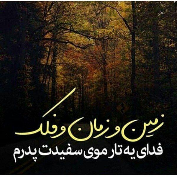عکس های احساسی و جملات زیبا در مورد فوت پدر Persian Quotes Mood Quotes Text Pictures