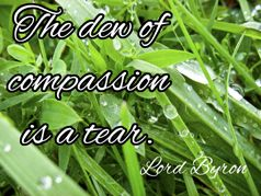 The dew of compassion is a tear. _ Lord Byron