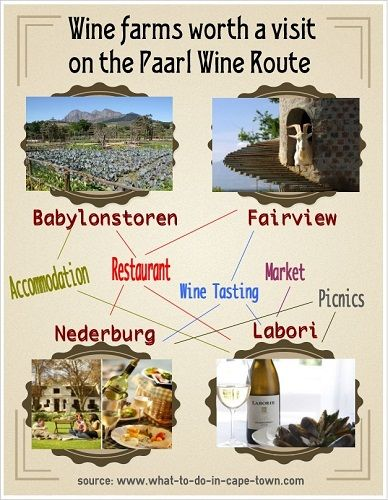 Wine farms worth a visit on the Paarl Wine Route