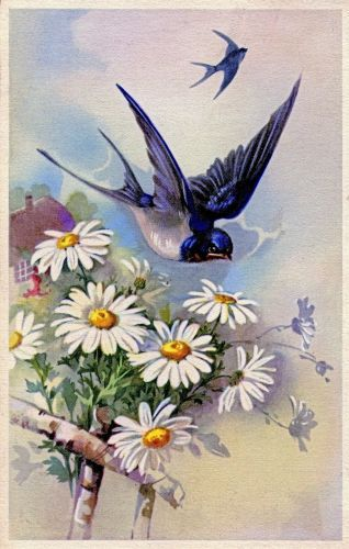 Vintage Swallows Postcard ~ Violeta lilás Vintage                                                                                                                                                                                 Mais