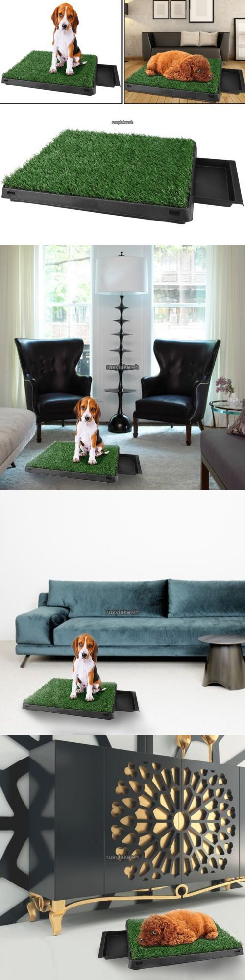 9 best dog potty images on pinterest dog accessories pets and dog