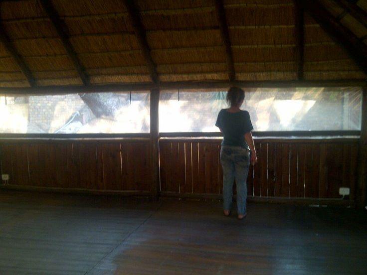 Inside Lapa