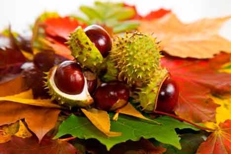 Pours soulager les hémorroïdes, il est très important d'adopter une alimentation riche en fibres et de boire au moins deux litres d'eau par jour.