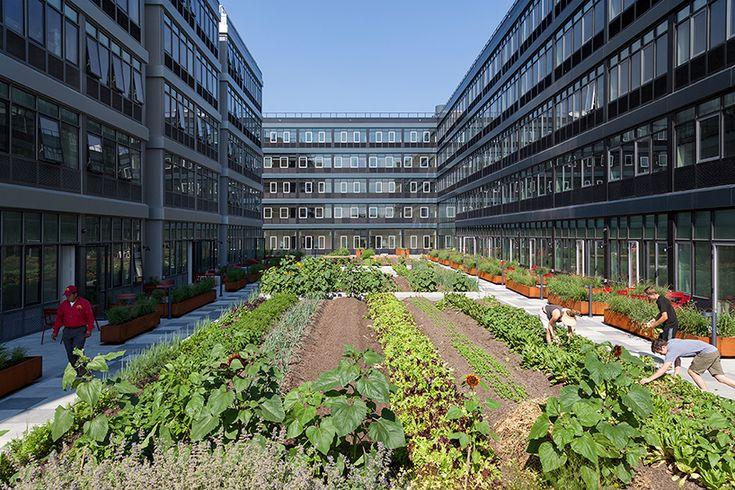 urban-gardens-new-york-550-vanderbilt-urby-hunters-point-south-designboom-02