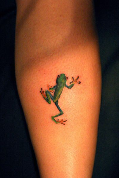 tree frog tattoo | Flickr - Photo