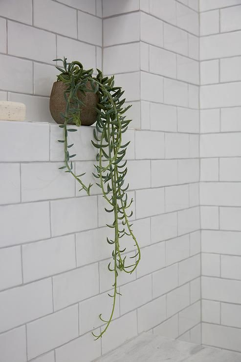 A potted plant sits on a white subway tiled shower…