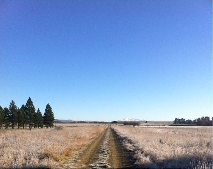 'Frosty morning' Central Otago Rail Trail, Ranfurly, New Zealand