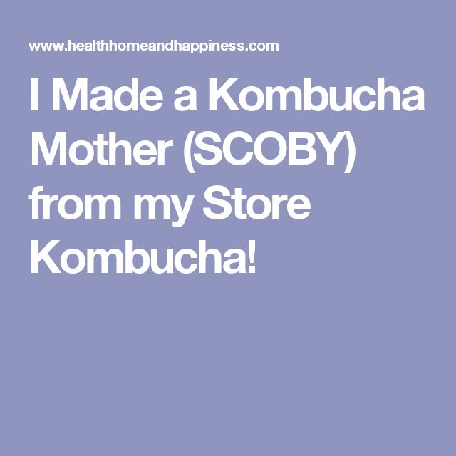 I Made a Kombucha Mother (SCOBY) from my Store Kombucha!