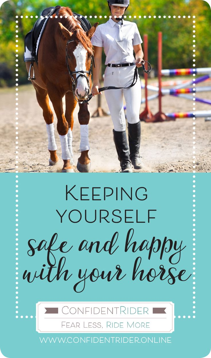 You may have seen my posts about a training clinic that I attended with my lovely horse Dee on Facebook- did I mention how much I love him? Anyway! Ellie O'Brien from Finesse Equestrian Training hosted the clinic, and I sat down with her to have a chat about something we are both passionate about- how to keep yourself safe and happy with your horses.  I hope you enjoy it, we would love to know your thoughts! xx Jane