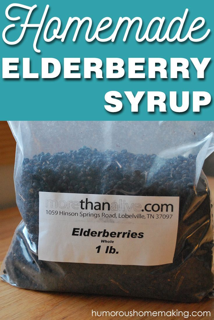 Best 25 elderberry syrup ideas on pinterest cold and - Fir tree syrup recipe and benefits ...