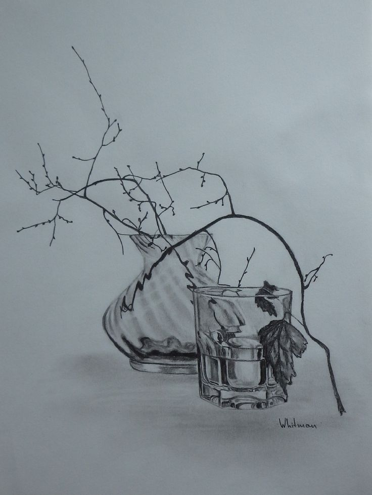 Vase and a glass still living fe sketch original art graphite pencil drawing