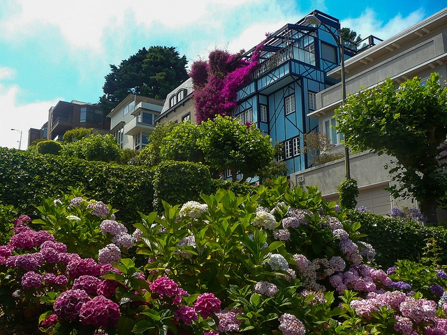 1000 Images About San Francisco The City By The Bay On