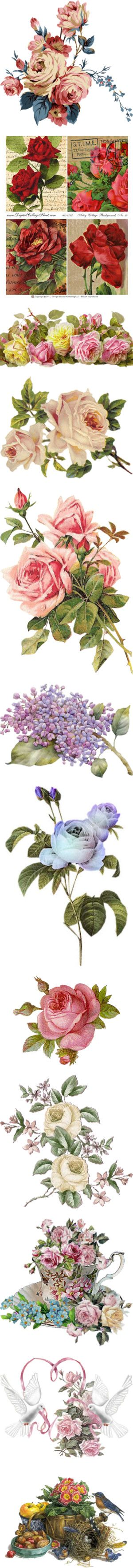 """""""Victorian Flowers"""" by maneevanit ❤ liked on Polyvore"""