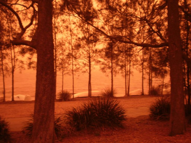Dust storm at Warners Bay Lions Park 23rd September 2009. Photo taken by J Moulton.
