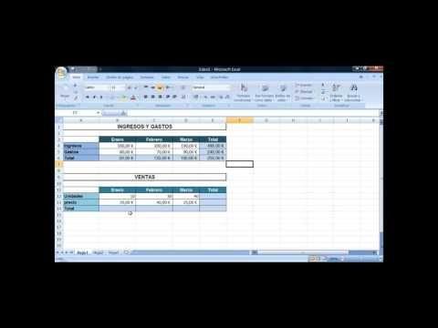 Ingresos y gastos | Excel videotutoriales