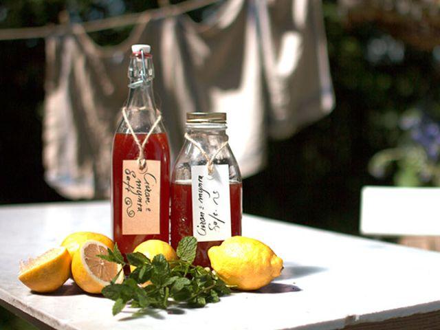 Lemonad med mynta (kock Ernst Kirchsteiger)