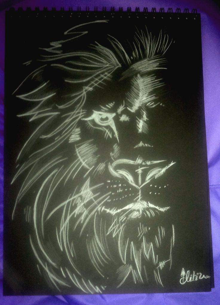 lion on black paper
