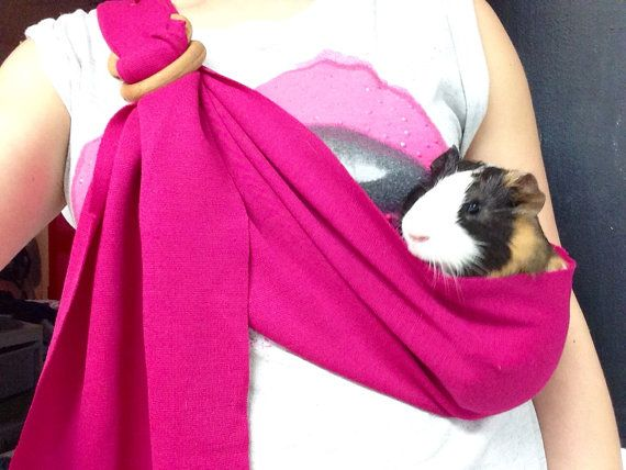 Pet carrier guinea pig hamster adjustable by BangBang714 on Etsy