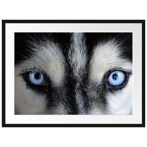 Ice Blue Husky Eyes Framed Poster East Urban Home Size 60cm H X