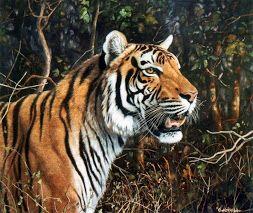 galeria pinturas de tigres