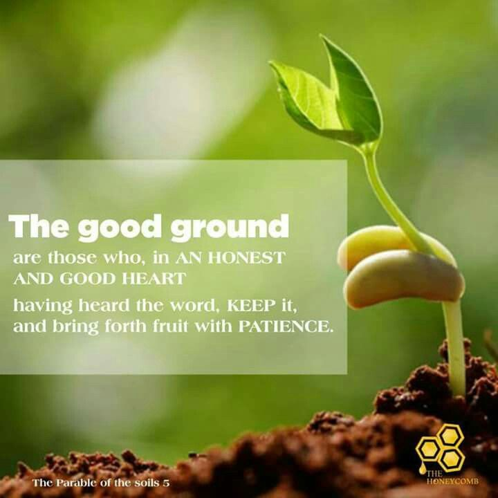 Today's honey🍯 July 7, 2017  The Good ground (The Parable of the soils 5)  What is more disappointing than sowing a seed in the ground, eagerly anticipating a yield only to be confronted with barrenness? https://m.facebook.com/photo.php?fbid=1224444577683570&id=779882162139816&set=a.783016655159700.1073741828.779882162139816&source=54