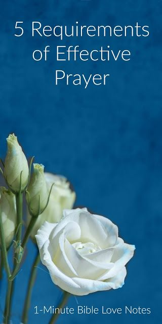 """Prayer is both simple and complex and these 5 """"requirements"""" come straight from Scripture and make our prayer life more effective. What a wonderful privilege to take our concerns to the Lord. This 1-minute devotion explains."""