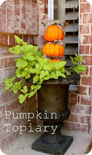 love this pumpkin topiary mixed in with sweet potato vine via Crafty Texas Girls