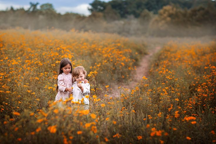 Portrait of children in a field of yellow wild flowers, photographed in Northern Virginia by fine art photographer Clare Ahalt Photography, specializing in child portraiture located in Maryland.