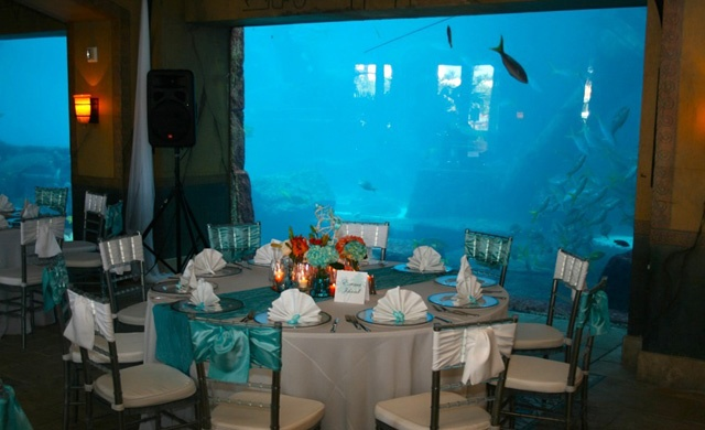 under the sea wedding decorations the sea wedding theme atlantis prom theme ideas 8158