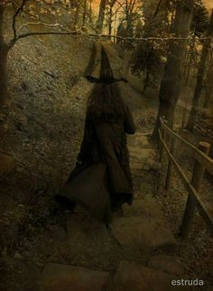 Image result for pictures of old real witches