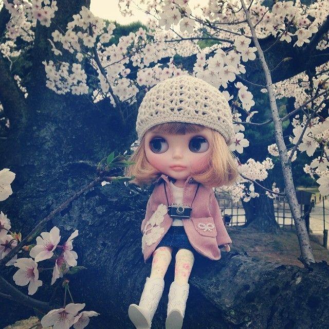 .@niconene | #blythe #ブライス 桜がとってもキレイだからカーリーちゃん興奮して木登りしち... | Webstagram