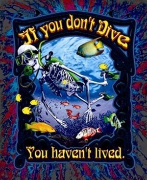 Amphibious Outfitters If You Don't Dive... Scuba T-Shirt